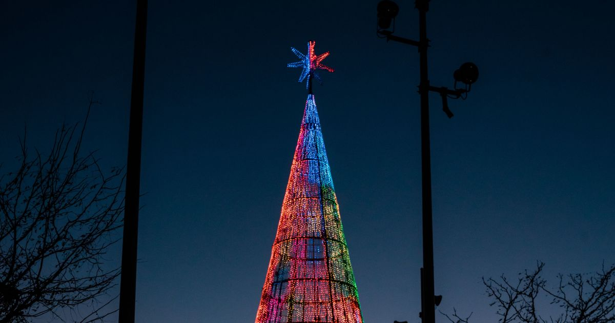 Going to Denver this holiday season? Walk inside the digital tree